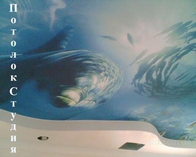 Enlever Peinture Acrylique Plafond Toulon Tarif Contrat