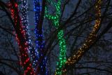 Купить Светодиодная нить,нити световые,гирлянда на деревья