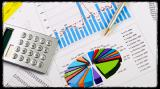 Разработка бизнес-плана по стандарту UNIDO