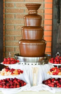 Шоколадный фонтан, аренда на праздник, Киев