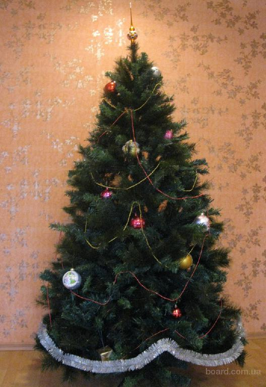 Купить елку, сосну дешево в Киеве