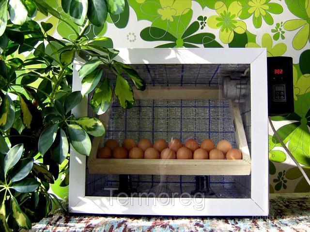 ...на 60 куриных яиц (42 утиных, 24 гусиных, 180 перепелиных яиц) с автоматическим переворотом Производитель...