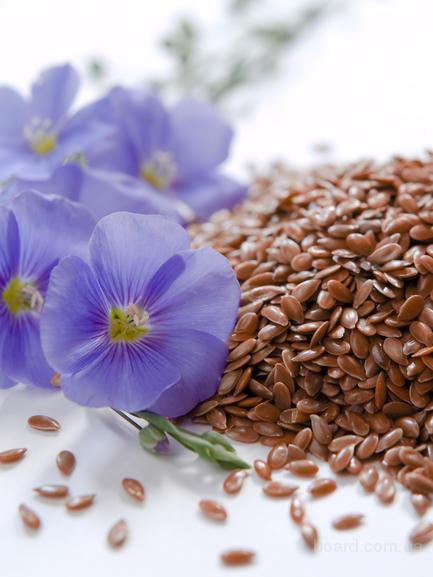 Семена,посевматериал лён