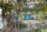 Агенство недвижимости в Анапе: Дача у Черного моря больше не привилегия!