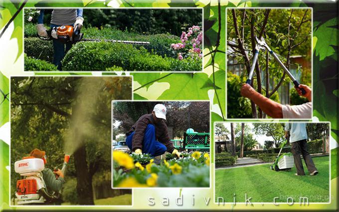 Услуги садовника. Уход за садом