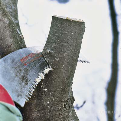 Аварийный спил деревьев, уборка участка, обрезка сада. Земляные работы, рытье траншей, котлованов.