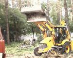 удаление деревьев киев, спил, валка, обрезка, корчевание пней.