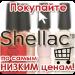 Купить гель-лак в магазине в Киеве