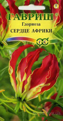 Продам семена комнатных растений