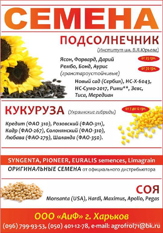 Посевной материал гибрид кукурузы Pioneer