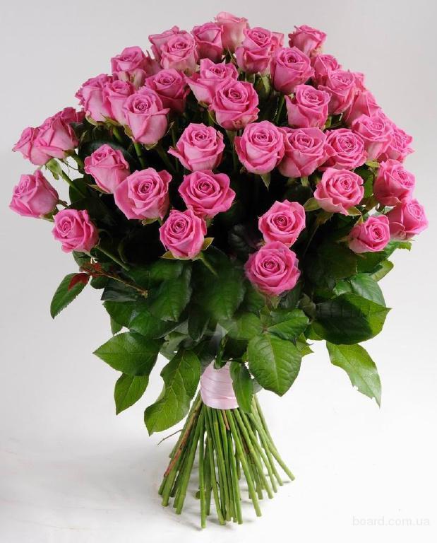 Продам розы донецк 101 роза цена