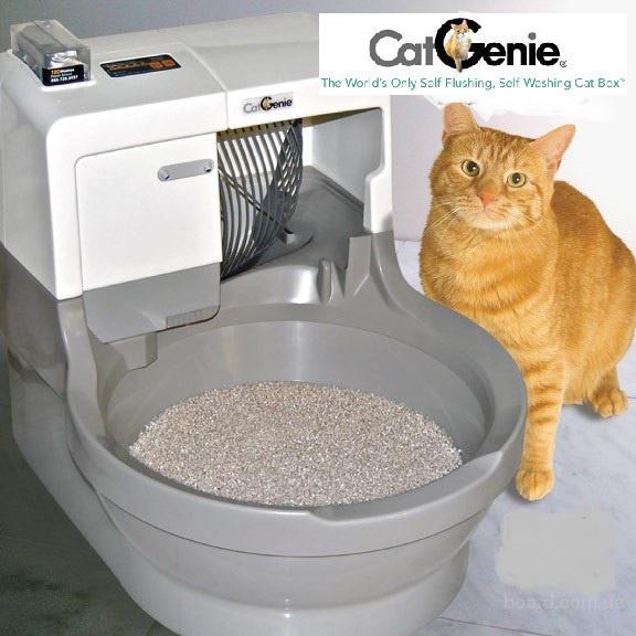 Как сделать кошачий туалет фото 296