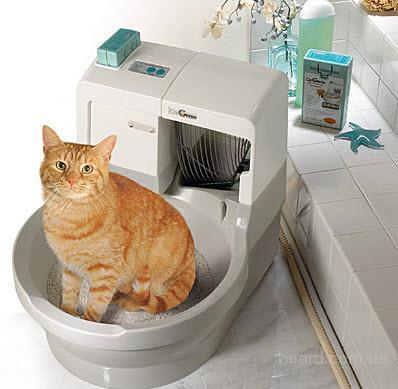 Купить памперс для кота
