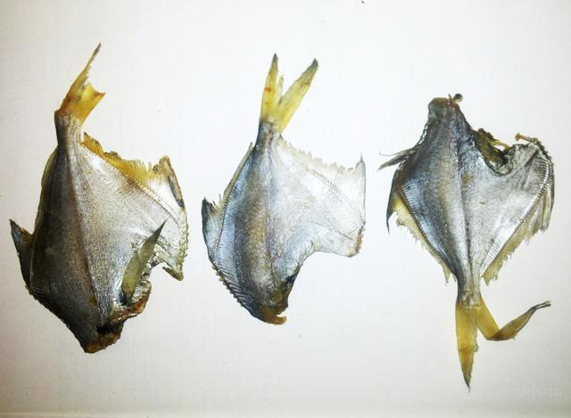 Солено-сушеные морепродукты