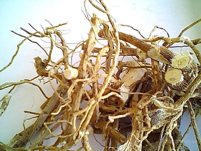 Цикорий корень сушеный