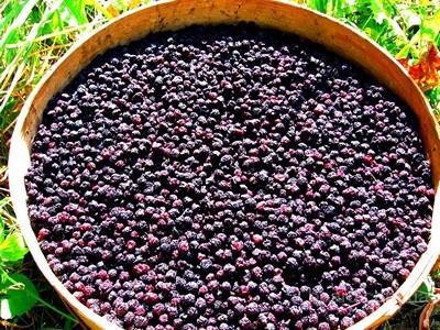 От автора.  Изготавливаем сушеные овощи, фрукты, ягоды Изготавливаем сушеные овощи, фрукты, ягоды: - картофель...