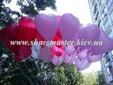 Воздушные шары на свадьбу в Киеве, арки, гирлянды, сердца, кольца, лебеди, фигуры из воздушных шаров