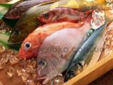Икра, рыба, морепродукты. ОПТ, розница.