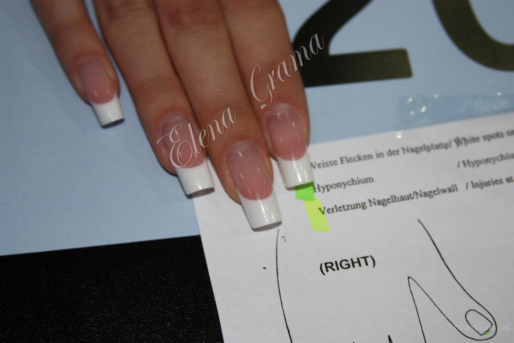 Предлагаю красивые ногти цена