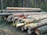 Продам лес кругляк сосна(ТТН, ЛГ25,радиология и т.д)