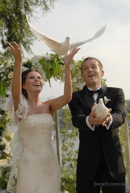 Голуби на свадьбу в Киеве
