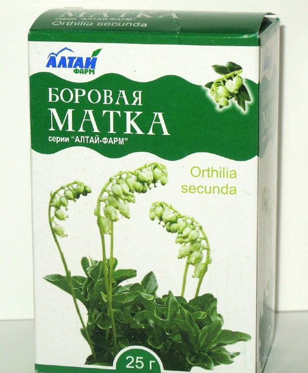 лечение травами мужской потенции