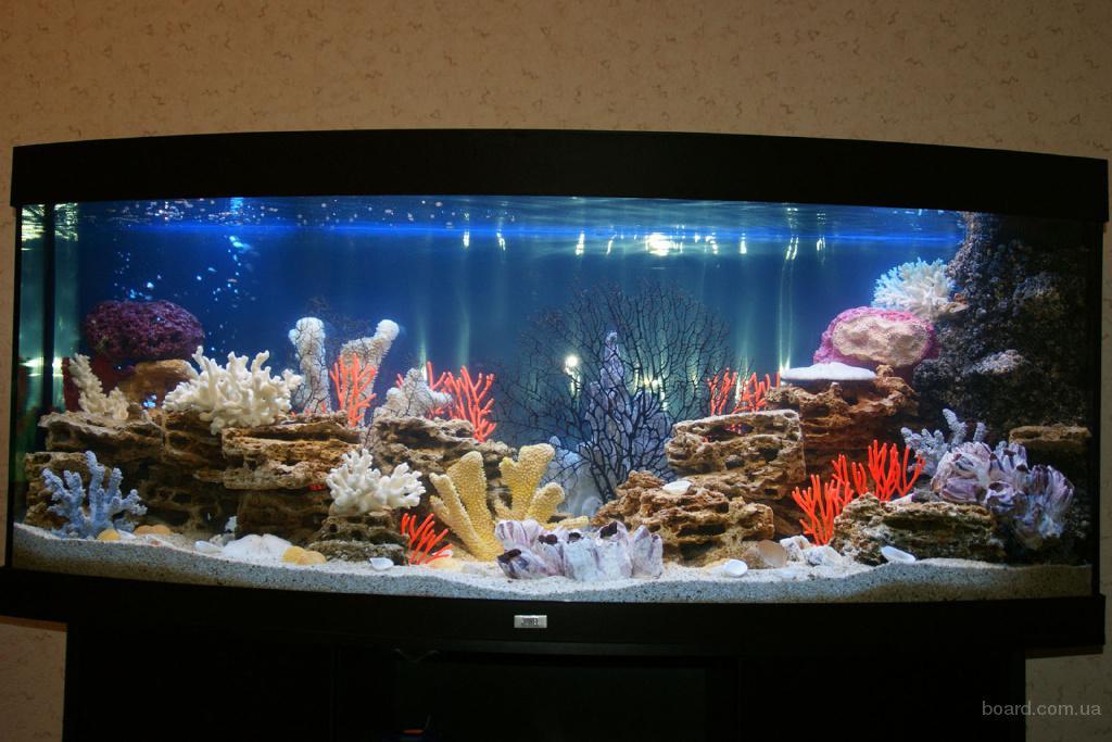 Камень натуральный декоративный Песчаник пещеристый Как сделать песчаник для аквариума