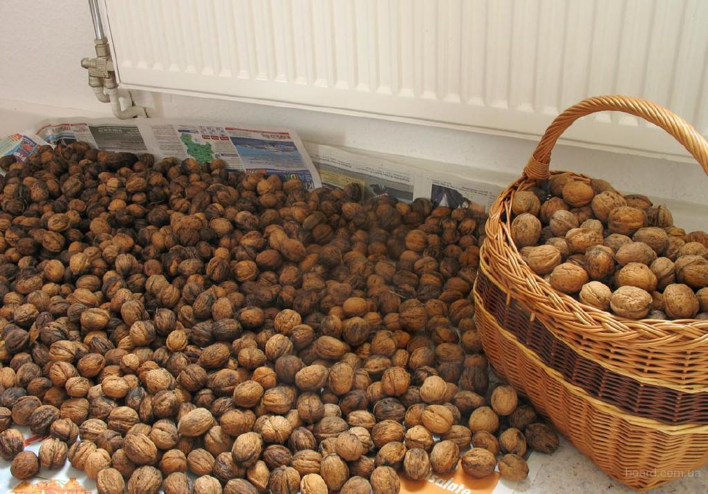 Где очищают грецкие орехи